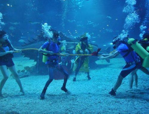 Touwtrekken onderwater